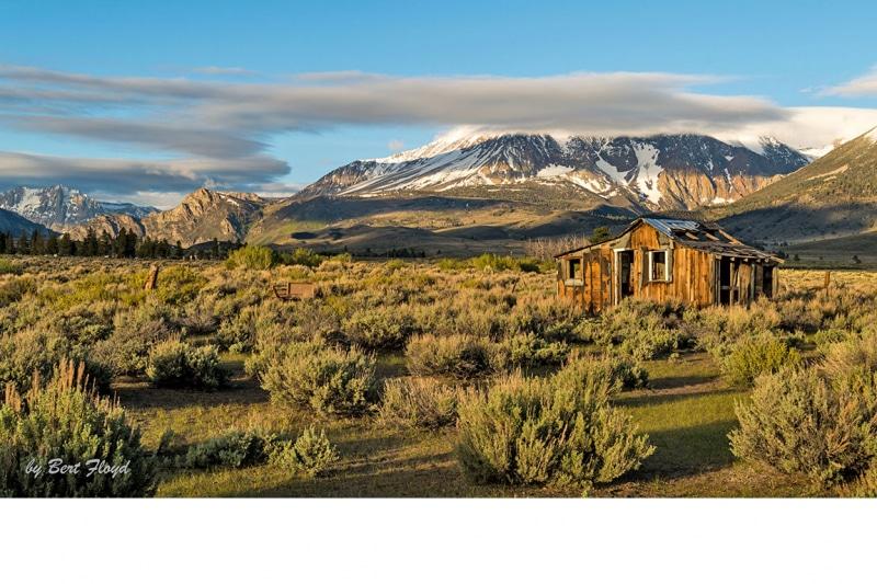 A New Day:  Home, Mono Lake Basin, Mount Gibbs, California