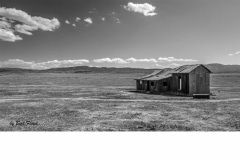 Planning:  Homestead, Carrizo Plain, California