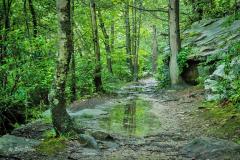 Pathway: Glen Onoko Trail, Pennsylvania